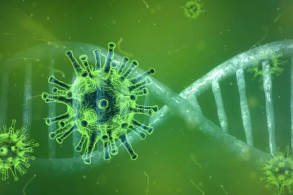 Coronavirus: l'epidemia nei social network